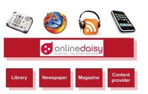 online daisy platforms
